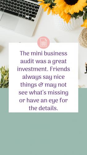 Business Audit client test. susana b (3)